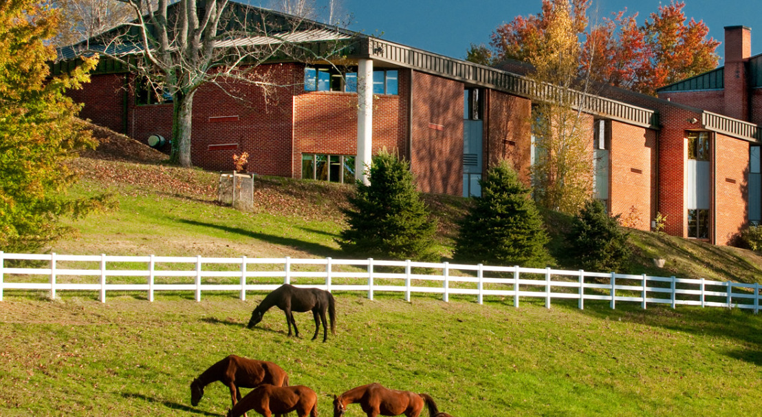 橡树山学院