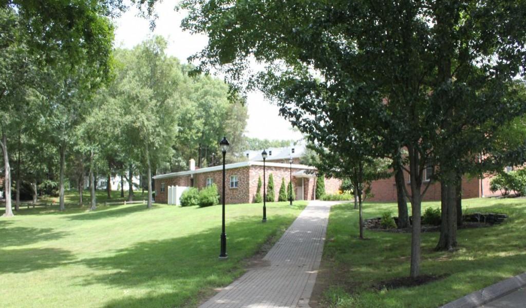 圣托马斯莫尔中学 - St. Thomas More School   FindingSchool
