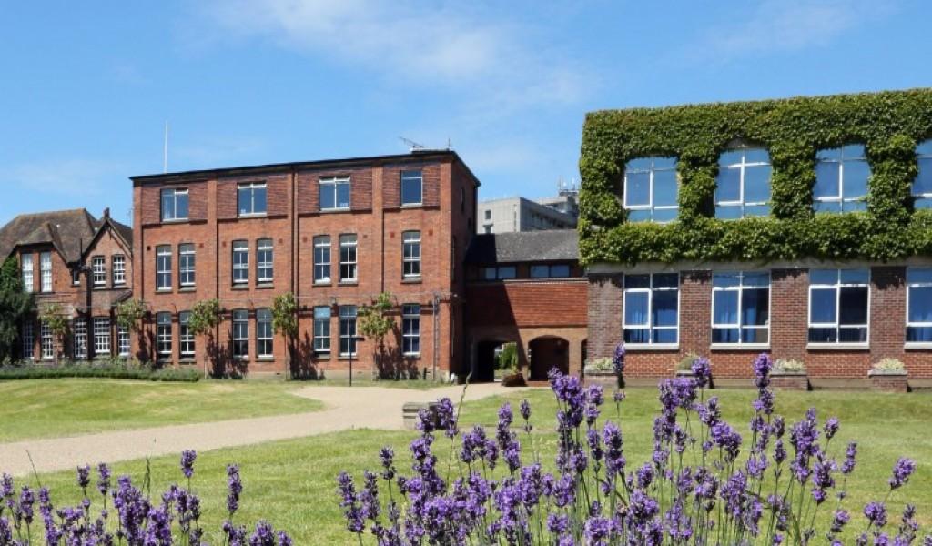 阿什福德中学 - Ashford School | FindingSchool