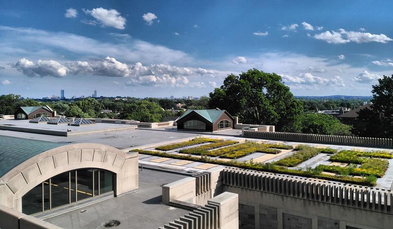 塔夫茨大学 - The Boston Skyline from Tufts University Campus - Tufts University