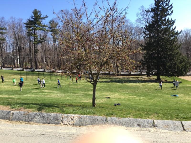 苹果园学校